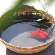 饮用水池用自闭防水涂料图片