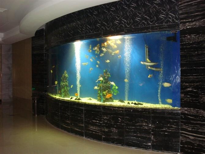 杭州水族器材公司 杭州水族器材哪里有卖 杭州水族器材最新报价