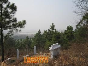供应墓碑厂家供应