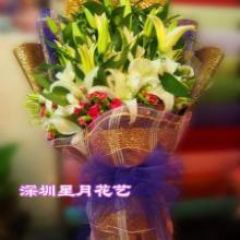 供应鲜花/鲜切花图片