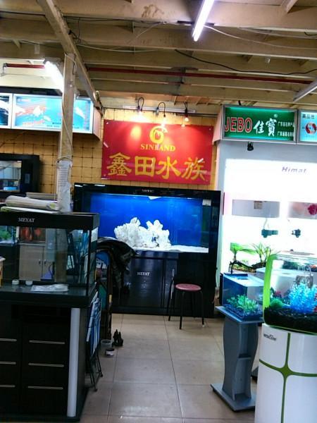 供应广州订做亚克力鱼缸厂家 广州哪里有制作亚克力鱼缸厂家报价
