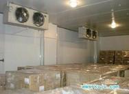 上海专业果蔬保鲜冷库安装公司