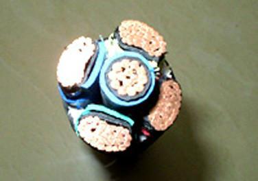 供应大连低烟无卤阻燃环保节能电缆ZR-DWZNYJV450+1
