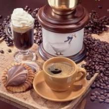 供应咖啡店开店服务
