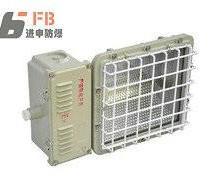 BTd53防爆泛光灯 AC220V泛光灯 射程达100m