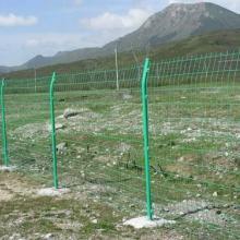 供应双边丝护栏网 银川护栏网经营商 圈地护栏网