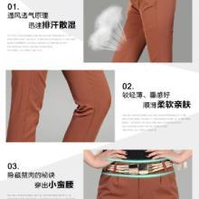 供应2013时尚显瘦夏季韩版休闲裤