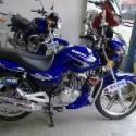 铃木钻豹125两轮摩托车图片