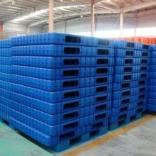 供应铁岭市塑料托盘加工托盘注塑厂家