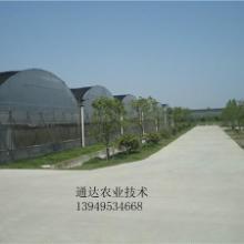 供应连栋拱形温室大棚建造大棚建造配件批发