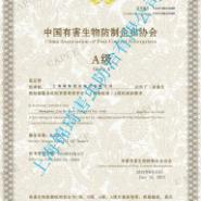 上海白蚁防治中心-上海白蚁防治站图片