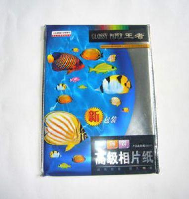 热带鱼图片/热带鱼样板图 (4)