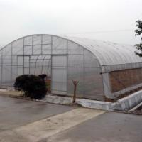 供应惠州兰花温室,惠州兰花温室建设,惠州兰花温室技术