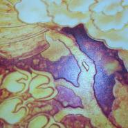 瓷来福电视背景瓷砖背景墙富贵有余图片
