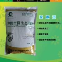 北京抗应激添加剂提高牲畜免疫力