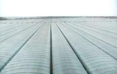 供应质量最好的双色地膜供应,质量最好的双色地膜厂家价格,双色地膜厂家