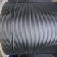 不锈钢丝绳网/1mm不锈钢丝绳图片
