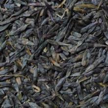 长期供应板蓝根种子、免费提供种植技术包回收。批发
