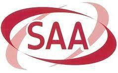 供应电线插头SAA认证服务