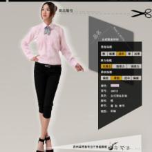 供应衬衫女时尚长袖职业衬衫粉色货源批发