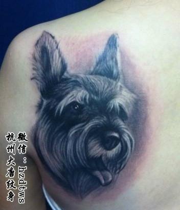 3d立体纹身杭州纹身店-大唐刺青价格|批发|报价
