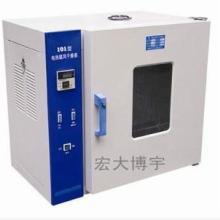 生产 电热 101-1A 101-2 恒温 鼓风 烘箱 煤炭水分干燥图片