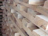 宁波进口中美洲原木单证服务