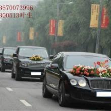 供应深圳宾利出租/深圳豪华车出租