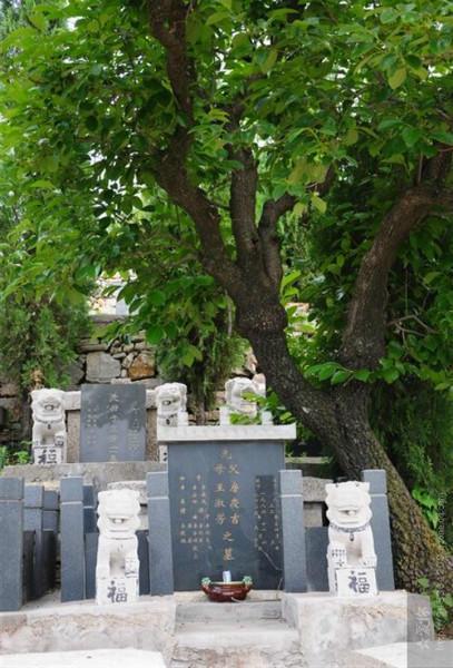 供应殡葬用品墓地
