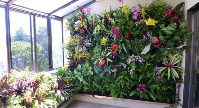 供应阳台绿化装修植物墙设计