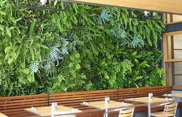 呼和浩特主题餐厅装修植物墙图片