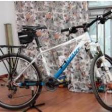 供应捷安特山地自行车