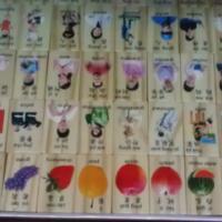 福州多米诺木制玩具央视品牌木丸子