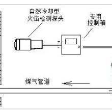 供应火焰检测仪表