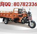 宗申Q2长征200三轮摩托车电动车图片