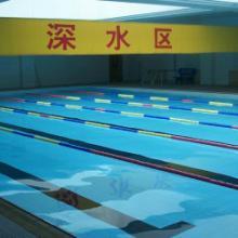 供应 山东济南游泳池水处理设备公司