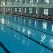 供应游泳池水处理公司游泳池水质标准