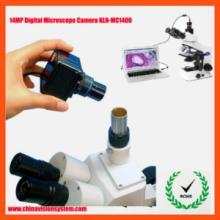 供应1400万像素数码显微镜摄像头