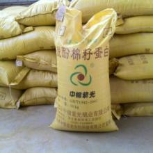 供应中棉紫光饲料棉籽蛋白
