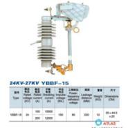 温州厂家直销24KV-27KV/YBBF-15出图片