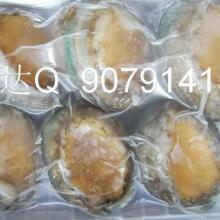 供应进口冷冻水产品鲍鱼