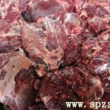 上海市供应大量供应鲜冻驴肉驴鞭驴排批发