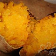 供应基石立式烤地瓜机价格烤番薯级厂家在沈阳批发