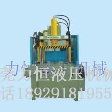 供应东莞多功能液压机