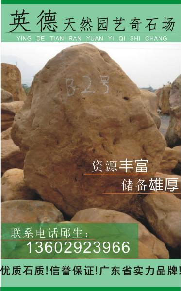 供应广东黄蜡石广东奇石