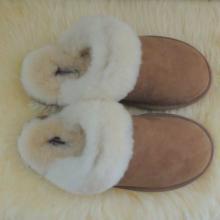 供应进口环保羊毛一体居家拖鞋 女款时尚保暖羊毛拖鞋大量批发