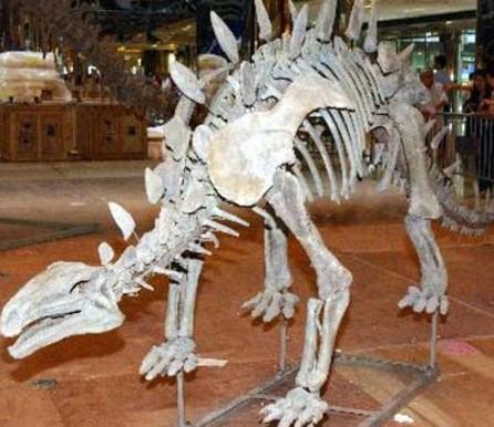 恐龙_恐龙供货商_天津哪里有最大规模恐龙展