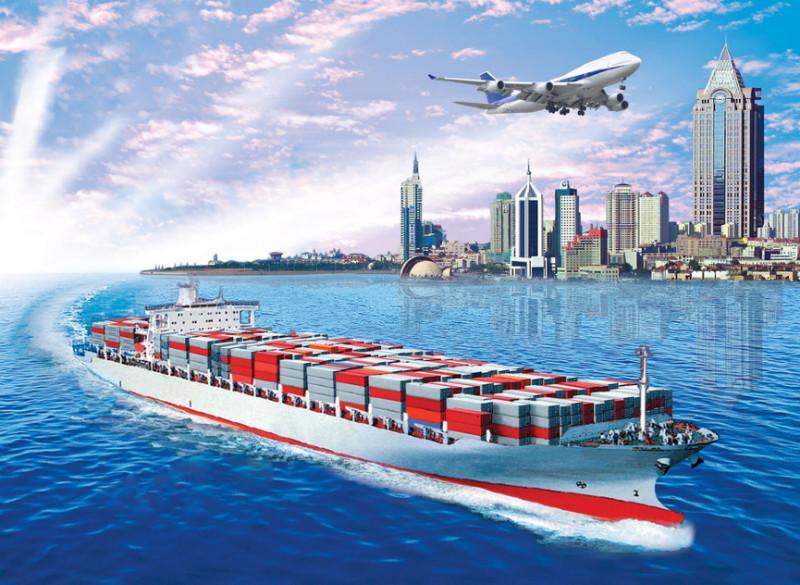 浙江国际海运学院_国际海运案例_天津哪里卖海运货代实务案例