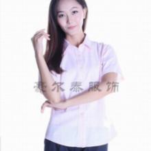 豪尔泰服饰 供应 短袖衬衫 HDC1301-16