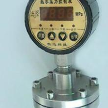 数字压力控制表BD-801K